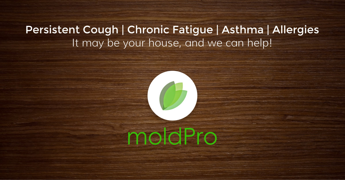 10 Common Symptoms of Mold Biotoxin Illness | MoldPro LLC