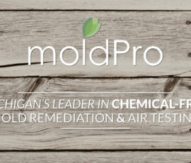 MoldPro is the Premium Brand in Mold Remediation for a Reason