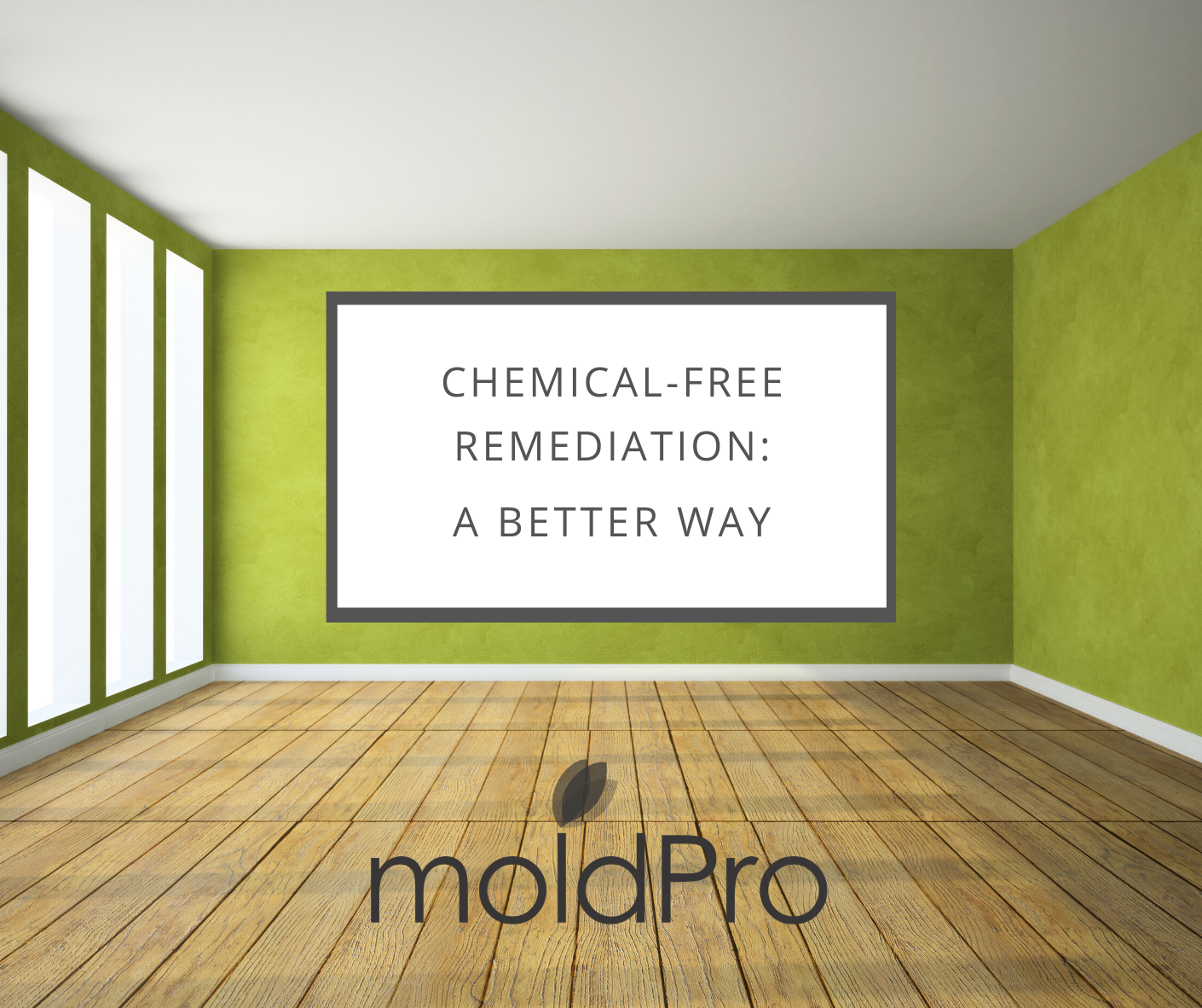 Chemical-Free Mold Remediation: The Healthier and Most Advanced Alternative for Your Mold Challenge